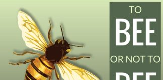 To Bee or not to Bee - that is the question!