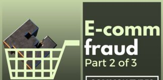 Some common types of E-commerce fraud are described in detail.