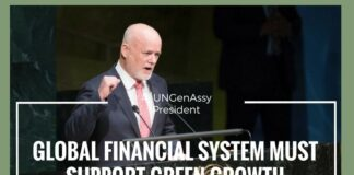 Global financial system must support green growth