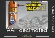 Is an AAP loss a loss of the Civil Society? Or will another Anna Hazare emerge from this debris?
