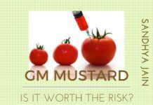 Has the Government of India looked at all the aspects of introducing GM Mustard?