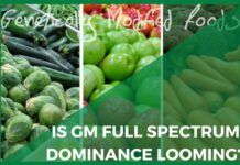 GM seeds in several food crops