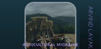 Will Scientific farming rid India of its Agricultural Migraine?