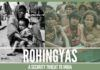 Rohingyas - a security threat