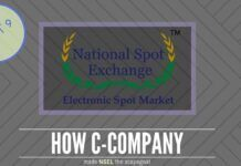 C-Company found a convenient stick in NSEL to beat Shah with