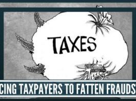 Fleecing taxpayers to fatten fraudsters