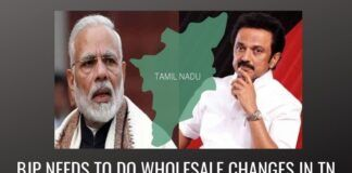 BJP needs to do wholesale changes in TN