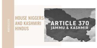 House Niggers and Kashmiri Hindus