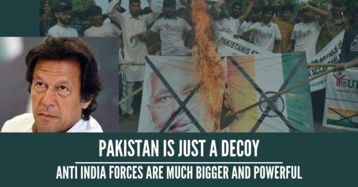 Pakistan is just a decoy, anti India forces are much bigger and powerful