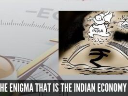 The enigma that is the Indian Economy - Microeconomic approach instead of a Macroeconomic one?
