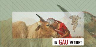 In gau we trust