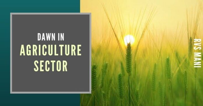 One of the sectors of the economy which is the bottom of the pyramid both in the national agenda and the mind of the administrators has been the agriculture and related sector.