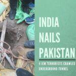 India nails Pakistan (10)