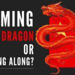 Taming the Dragon or riding along_